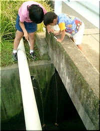 ザリガニ釣りに挑戦する2人