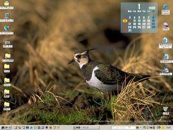 毎日変わる野鳥のデスクトップ