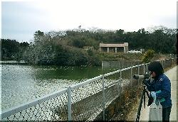 観察舎も整備された鵜の山